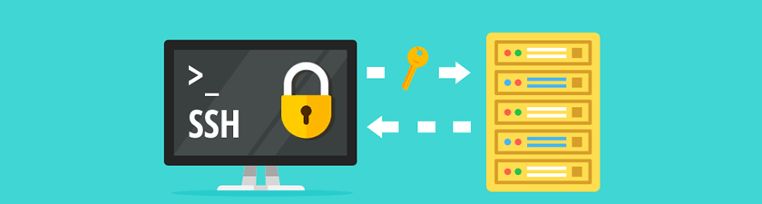 A web-based SSH functionality enabled on our web hosting platform